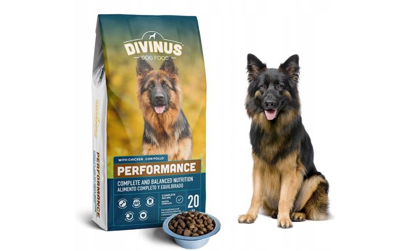 dobra karma dla psa
