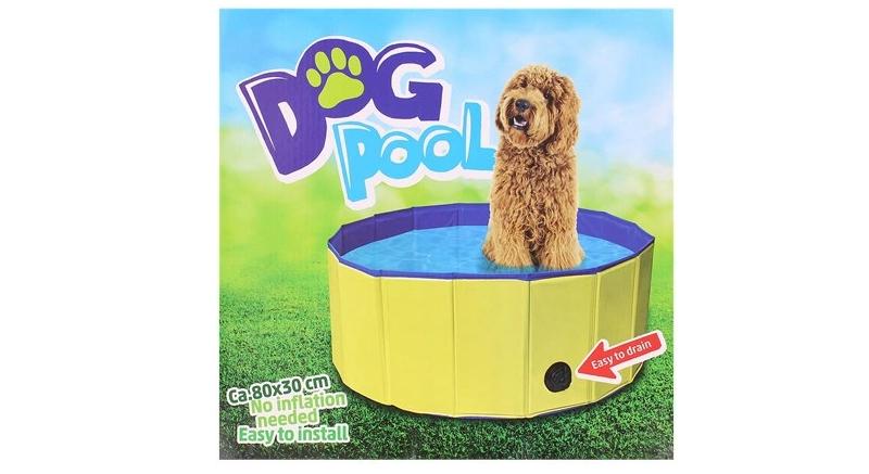 jaki basen dla psa