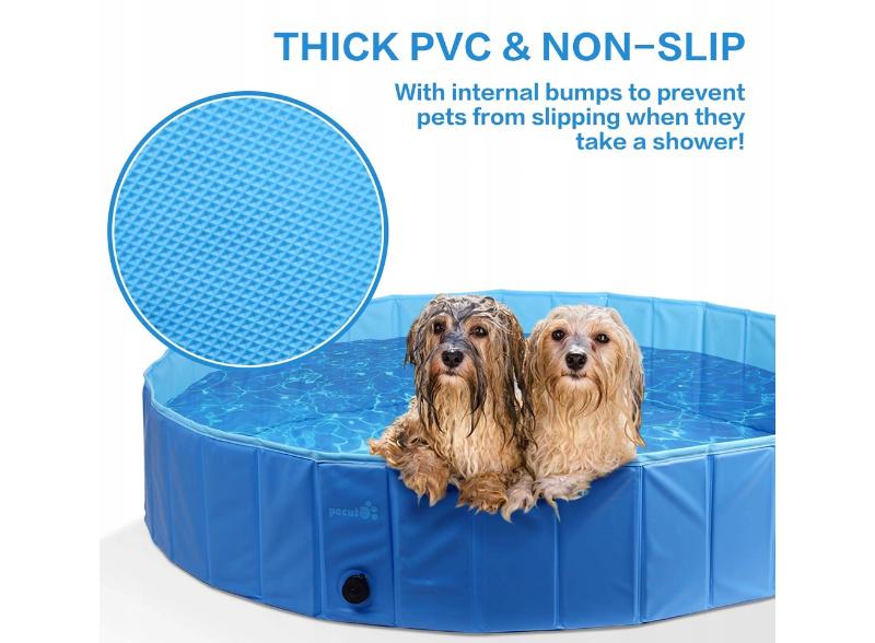 basen dla psów
