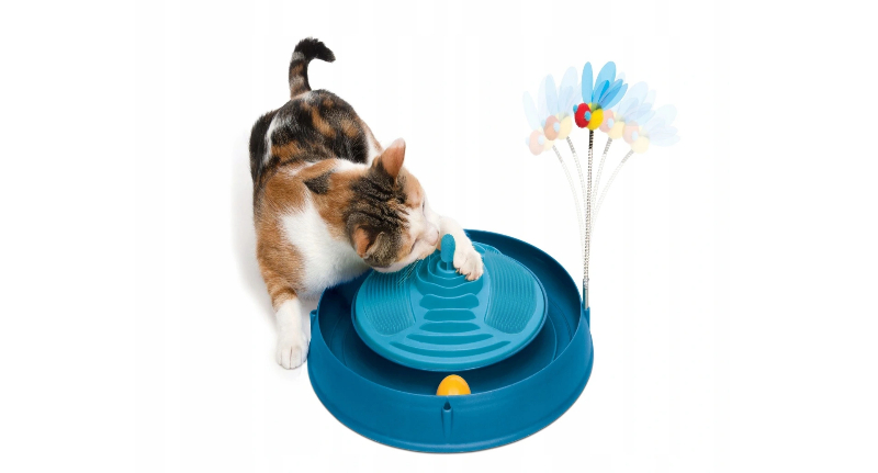 jakie zabawki dla kota