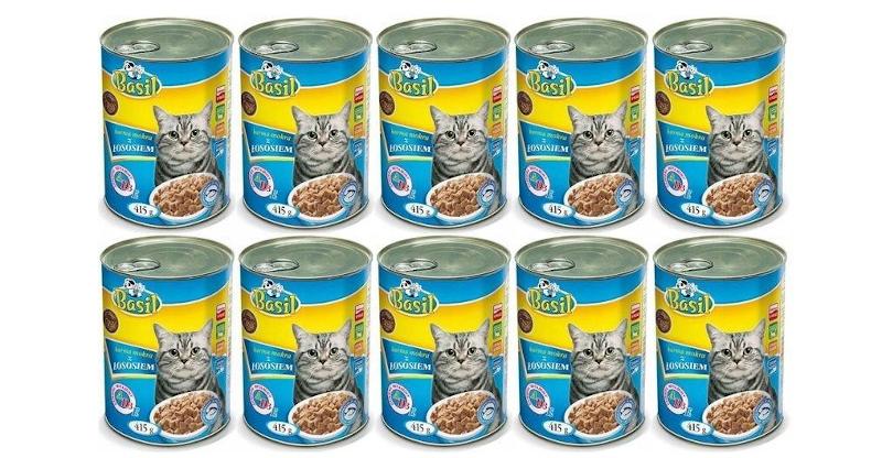 najlepsza mokra karma dla kota