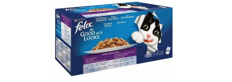 ranking mokrych karm dla kota