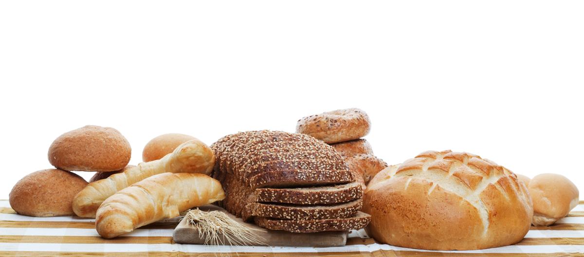 czy pies może jeść chleb
