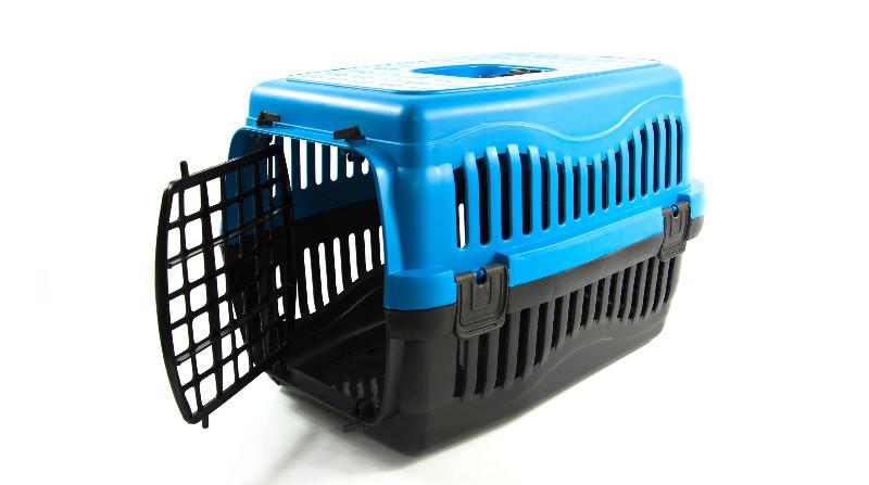 klatka transportowa dla kota