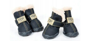 buty dla psa opinie