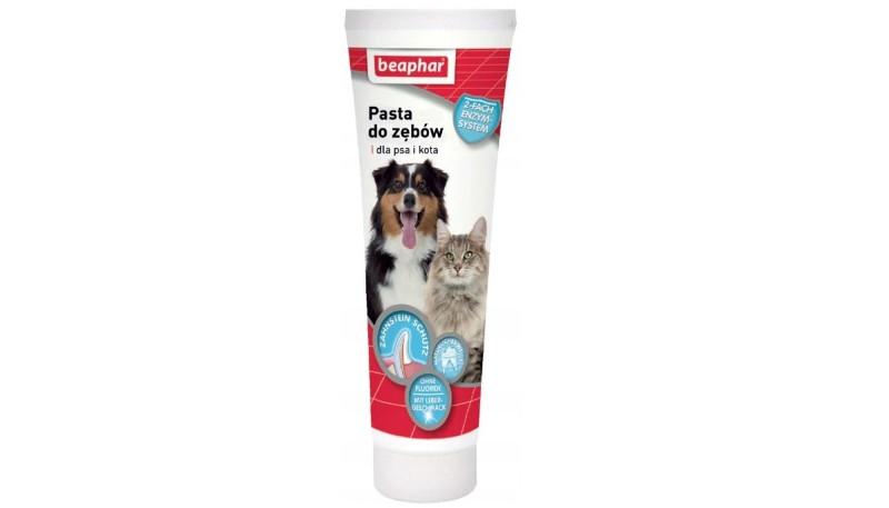 pasta do zębów dla kota