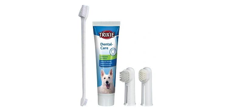 jaka pasta do zębów dla kota
