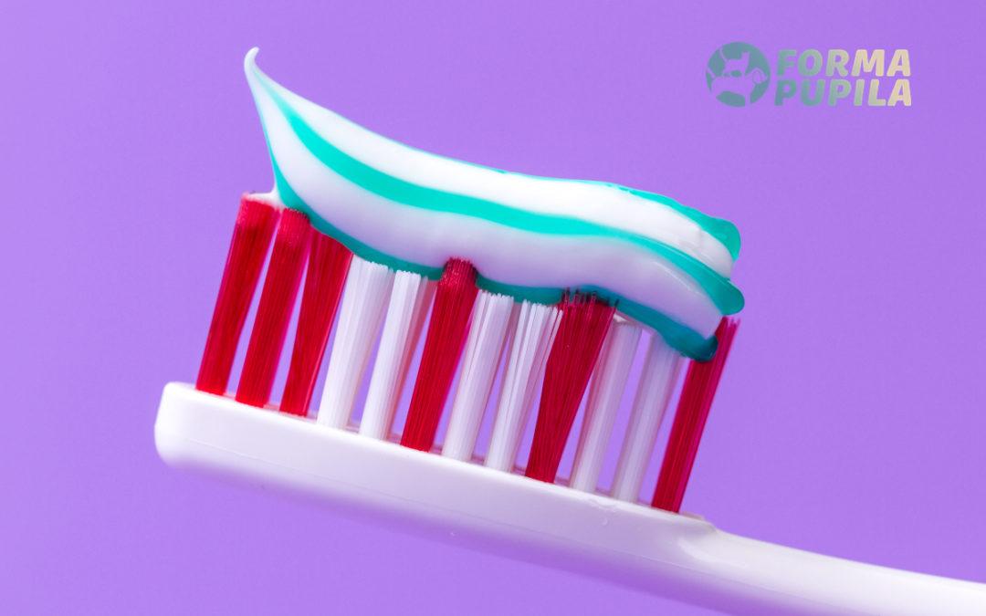Jaka pasta do zębów dla kota będzie najlepsza w 2021 – Opinie oraz Ranking