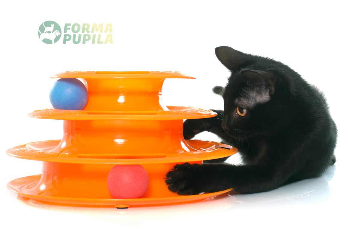 zabawki interaktywne dla kota ranking